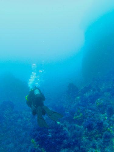 Scuba diving on the Costa del Sol